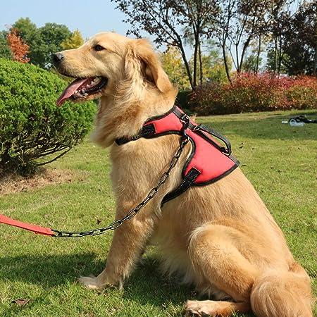 SHUNAI No Pull Dog Harness Pet Vest