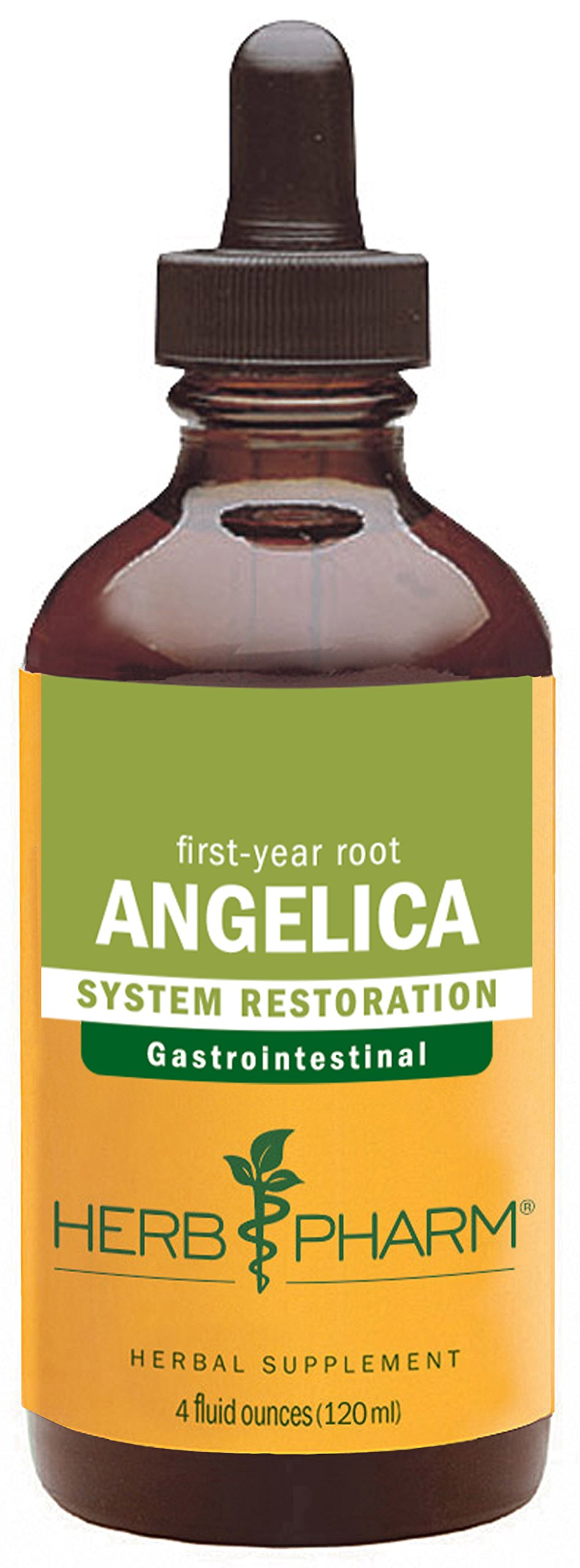 Herb Pharm Certified Organic Angelica Root Liquid Extract for Digestive Support - 4 Ounce