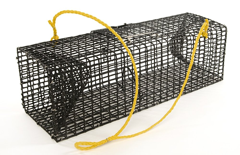 Willapa Marine Crawfish Trap by Willapa Marine Products, Inc.
