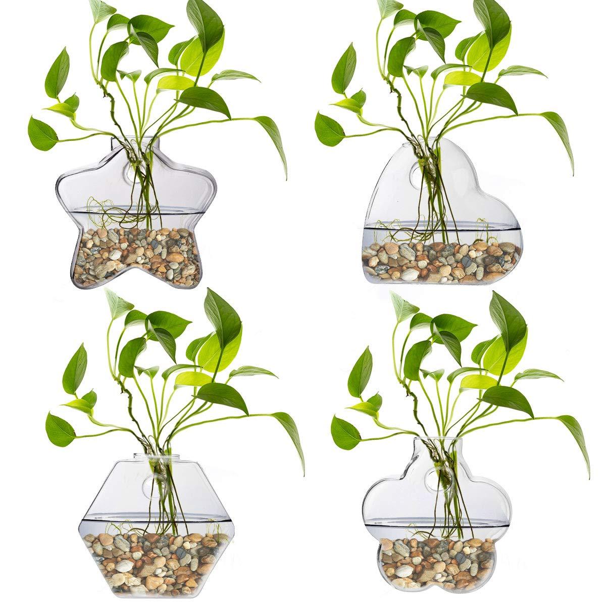 Hydroponics Plant Holders