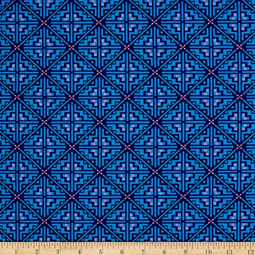 Quilt Butler Amy (Free Spirit Amy Butler Night Music Pathway Indigo Fabric By The Yard)