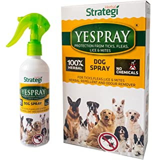 Strategi Yespray Herbal Protection From Ticks Fleas Lice And Mites For Dogs