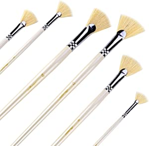 Amagic Fan Brush Set - Hog Bristle Natural Hair - Artist Soft Anti-Shedding Paint Brushes for Acrylic Watercolor Oil Painting, Long Wood Handle with Case, Set of 6