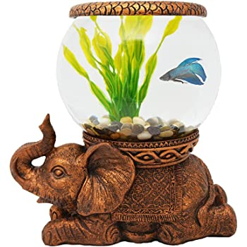 Decorative Fish Bowls Simple Amazon The Nifty Nook Exclusive Design New Good Luck
