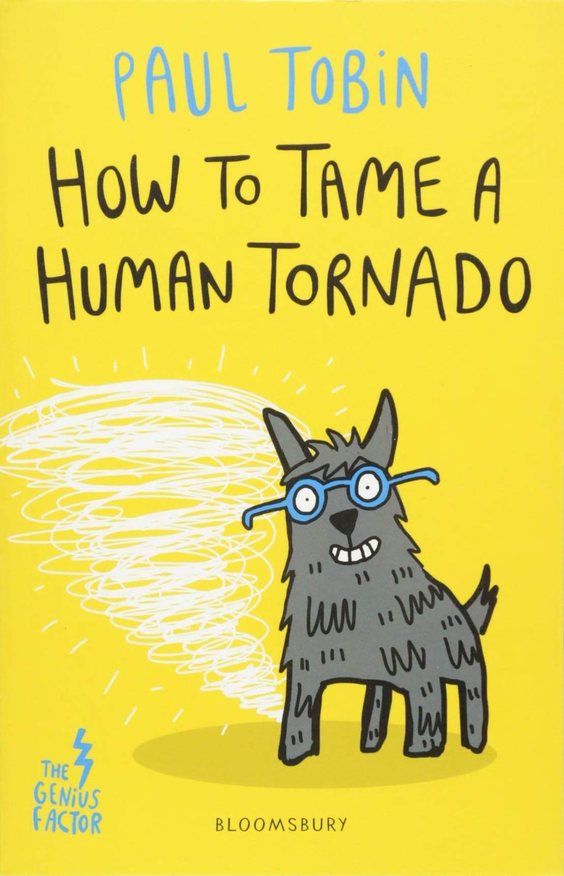 Download How to Tame a Human Tornado ebook