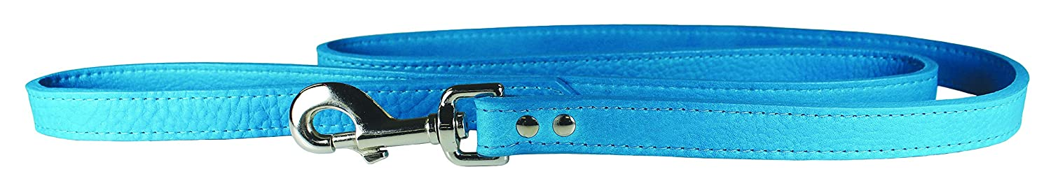 OmniPet 6274-TQ Luxe Leather Dog Leash, Turquoise
