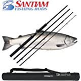 Santiam Fishing Rods 4 Piece 10'6'' 15-40lb Graphite Travel Casting/Trolling Rod w/Carbon Handle