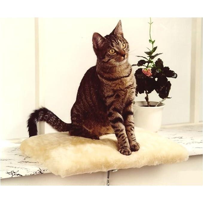 Silvio Diseño Gato - Tumbona Cama, manta de gatos, ventana ...