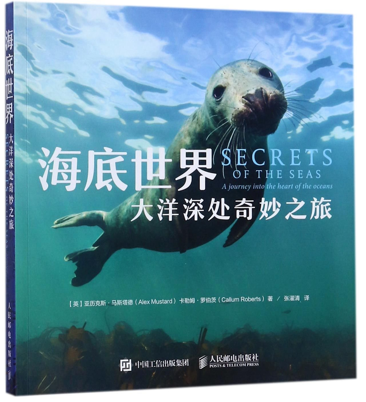 Secrets of the Seas: A journey into the heart of the oceans (Chinese Edition) ebook