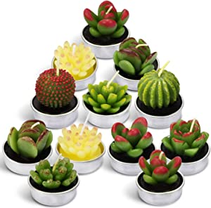LA BELLEFÉE Cactus Tealight Candles, Smokeless Handmade Cute Mini Plants Candles - Perfect for Home Decor/Birthday Gift/Wedding Props/House-Warming Party - 12 Pack