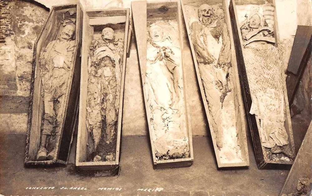 Convento San Angel Mexico Corpse Skeletons Mummies Macabre Real Photo PC  J76571 at Amazon's Entertainment Collectibles Store