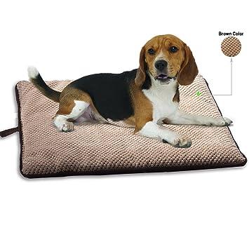 Amazon.com: PAWISE - Cama para perro o gato, cojín de teflón ...