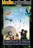 Dunkelherzen und Sternenstaub (Die Sumpfloch-Saga 2)