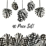 """Pine Cone Ornaments - Set of 40 - 1 1/2"""" Silver Painted Christmas Pinecone Ornaments with String"""