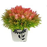 HYPERBOLES Artificial Plant for Home Decor Small Flower Tree with Ceramic Pot - 8 Inch