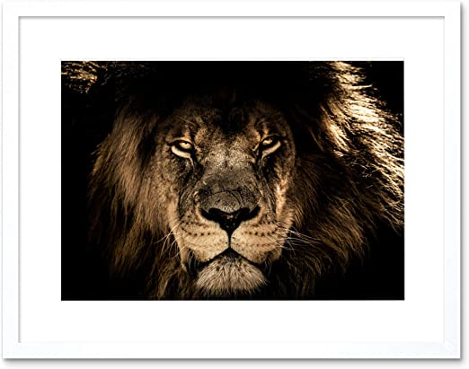 Lion Male Face Animal Cat 12X16 Inch Framed Art Print