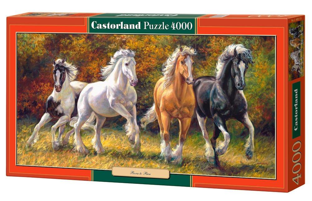 4000 Piece CJDKD C-400119-2 Castorland Born to Run Puzzle