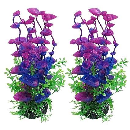 squarex - Adorno Decorativo para Acuario (plástico), diseño de pecera, Color Verde