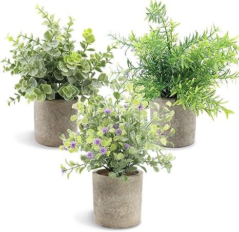 Amazon De Aiskki Kunstliche Pflanzen Pflanze Kunstliche Mini Kunstpflanzen Echt Pflanzen Kunstlich