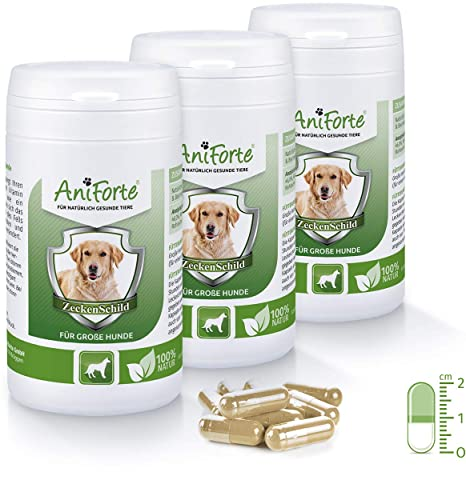 Anti Garrapatas para Perros Grandes (35-50 kg) - 3 x 60 ...
