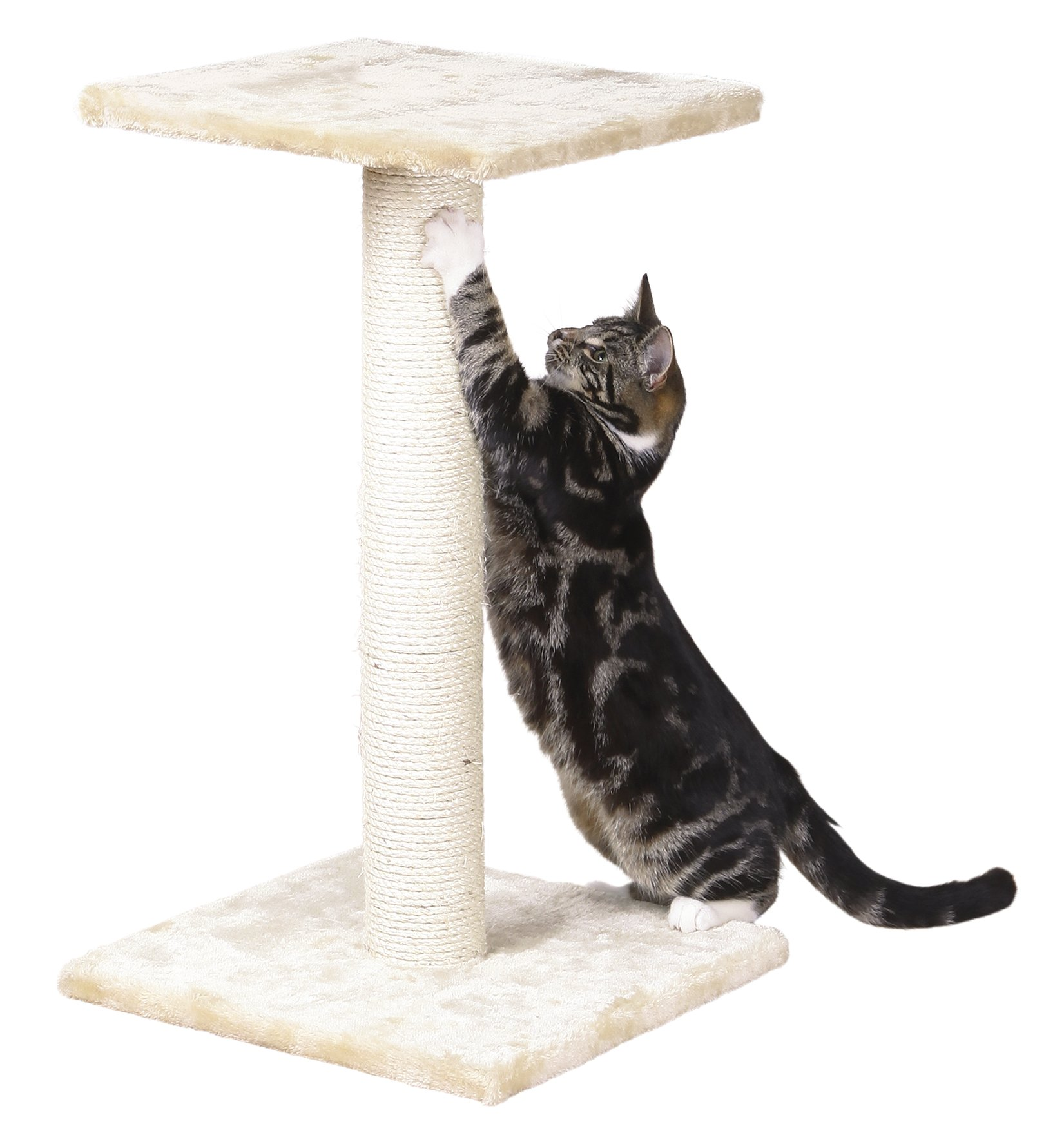 TRIXIE Pet Products Espejo Scratching Post