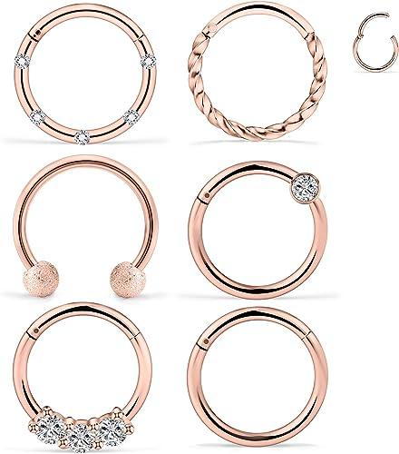 D.Bella 16G Clicker Septum Nose Rings Hoop Stainless Steel CZ Seamless Segment Hinged Rings 8mm Hoop Cartilage Tragus Helix Daith Rook Earrings Piercing Jewelry