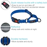 haapaw Martingale Dog Collar with Quick Release