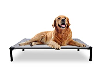 Mora Pets Dog Cot Outdoor Dog Bed Raised Dog Bed Elevated Pet Beds