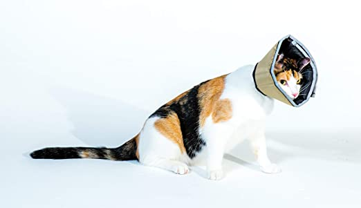 Soft Pet Recovery Collar with Removable Stays Comfy Cone The Original