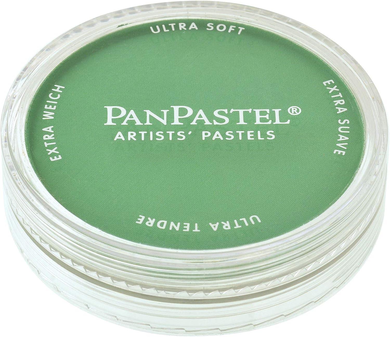PanPastel 26405 Ultra Soft Artist Pastel, Permanent Green, 640.5