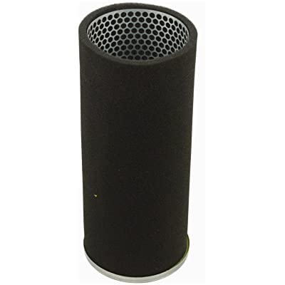 Luber-finer LAF8695 Heavy Duty Air Filter: Automotive