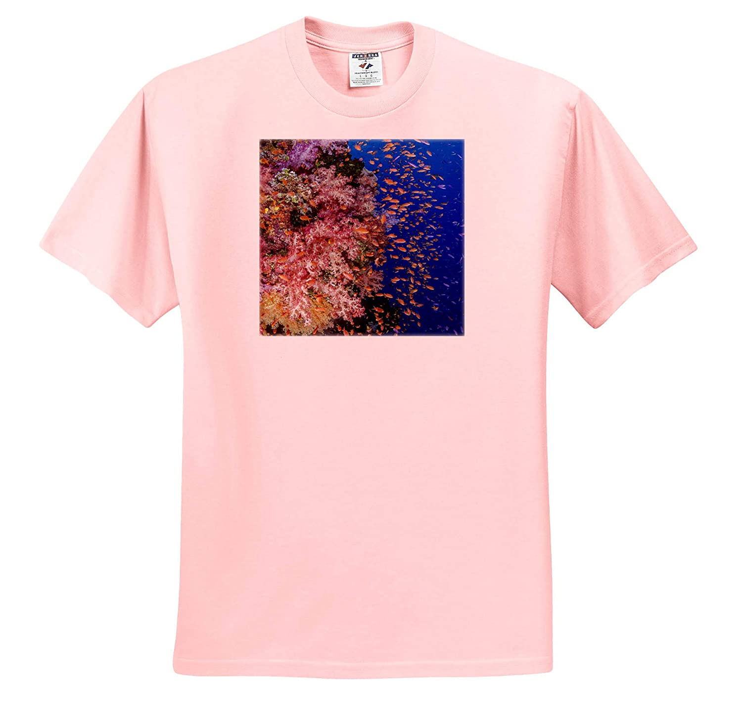 Reef with Coral and Anthias - Adult T-Shirt XL 3dRose Danita Delimont ts/_314016 Underwater Fiji