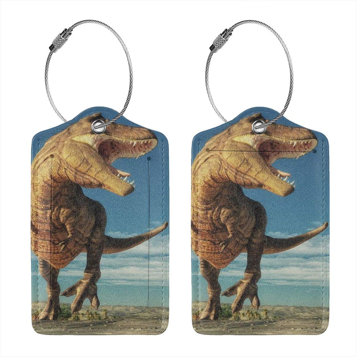 Godzigod Luggage Tags Leather Case Suitcase Label with Stainless Steel Loop Bag Baggage Tote Tags Travel Tags VDinosaurs Playing On The Jungle Palm Trees