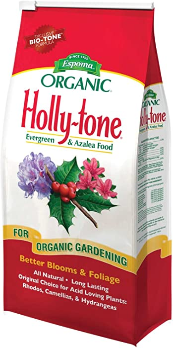 The Best Hollytone Evergreen And Azalea Food