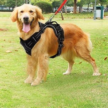 funkeen No de Pull de arnés del perro ajustable suave para el ...