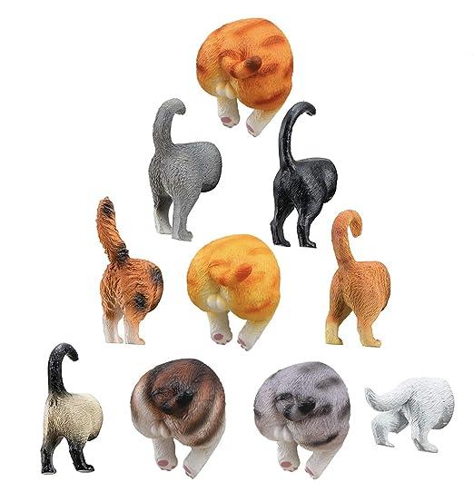 Juego de 10 imanes de gato para refrigerador – Juego de 10 para ...