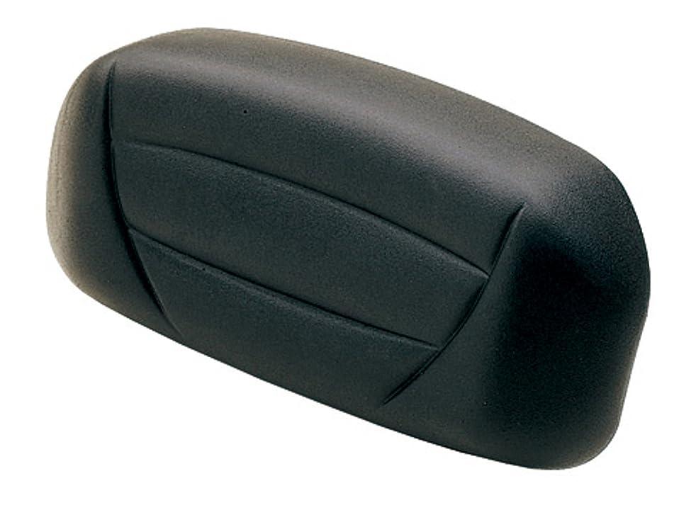 序文教育余分なハリケーン(HURRICANE) バックレスト (ブラック) ボルト用 (ボルト/R/ABS) HA6412B