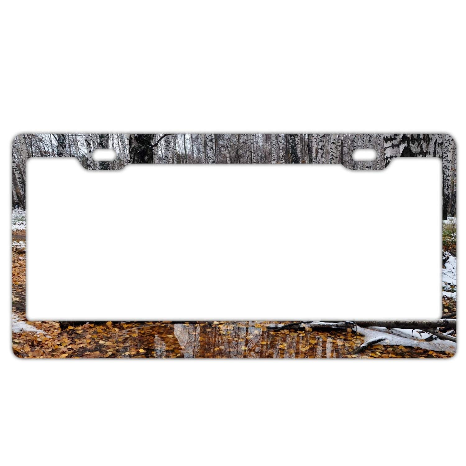 Amazon com: Imtailang Moss Metal Novelty License Plate Tag