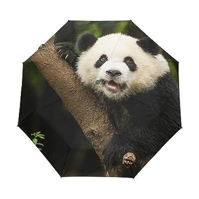 Cooper girl Panda Climb Tree Windproof Travel Umbrella Auto Open Close Foldable Compact Portable Lightweight UV Umbrellas for Women Men Kid