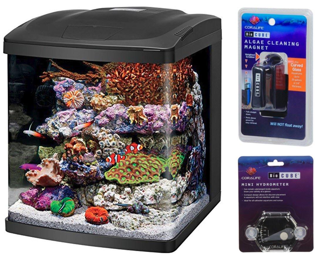 BioCube LED Tanks and Combo Kits (16 Gallon Tank Kit)