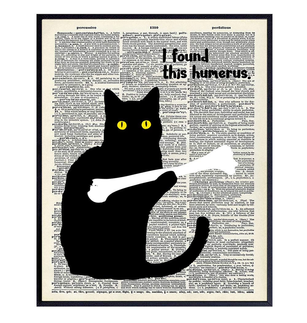 Cat Dictionary Art Print - 8x10 Gift for Kitty, Kitten, Cat Lover, Med Student, Doctor - Chic Vintage Home Decor, Wall Decoration for Clinic, Dr Office - Funny Unframed Poster - I Found This Humerus