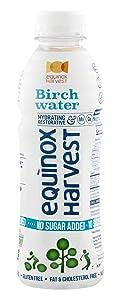 EQUINOX HARVEST Birch Water NO SUGAR ADDED / 16.9 Fl. Oz. (500ml) x 12 Bottles / Tapped from Birch Trees / Natural Ingredients