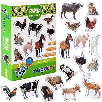 MAGDUM Imanes Animales Granja Foto Real de Pizarra Infantil para ...