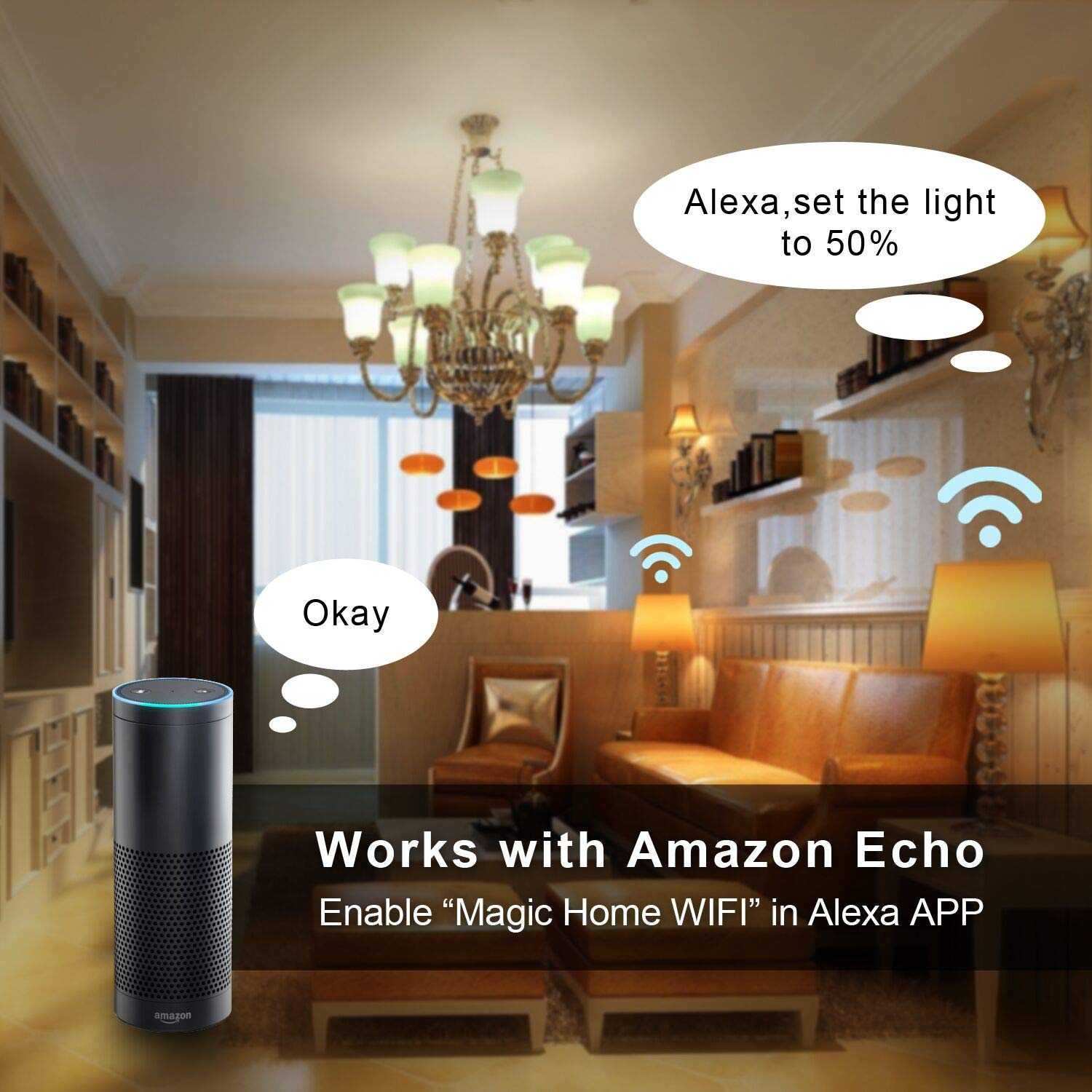 3000K E26 Dimmable Multi-Color Led,No Hub Required,Compatible with  Alexa /& Google Assistant /& IFTTT 2PC Pack ROGOEI Smart WiFi Led Light Bulbs 6.5W RGB/&W Warm White