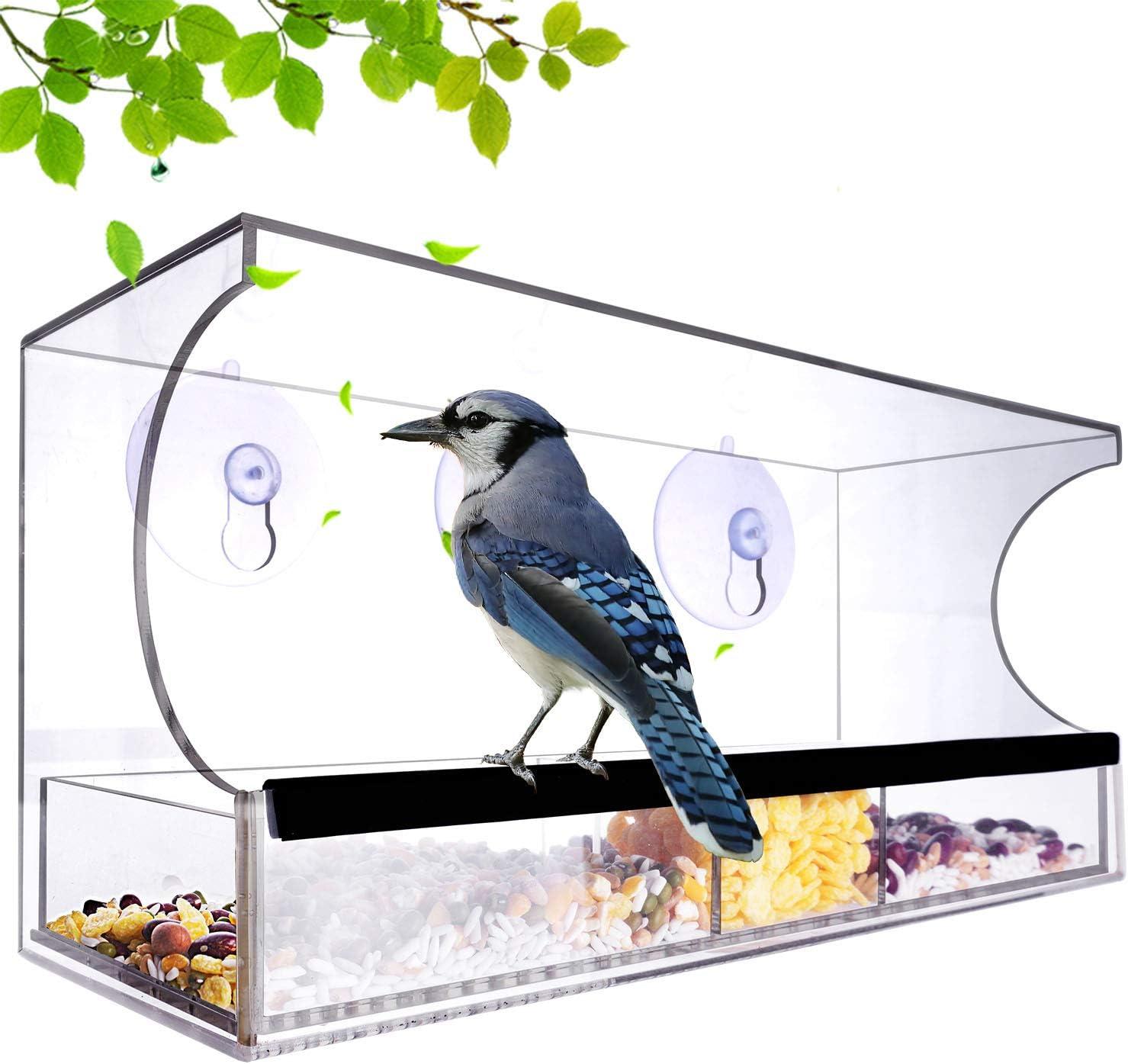 Kanena - Comedero para pájaros con ventana grande de acrílico con bandeja extraíble y ventosa con 64 agujeros de drenaje