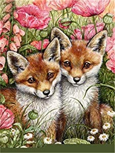 Paint by Numbers Kits DIY Oil Painting Home Decor Wall Value Gift- Two Little Foxes 16X20 Inch (No Frame)
