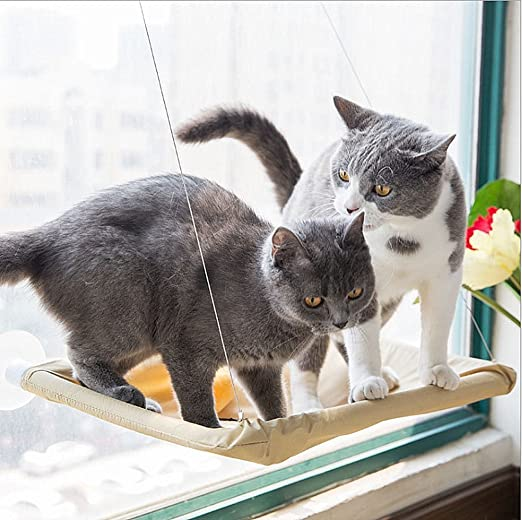 GPR hamaca para gato o gato con ventana de asiento: Amazon.es: Productos para mascotas