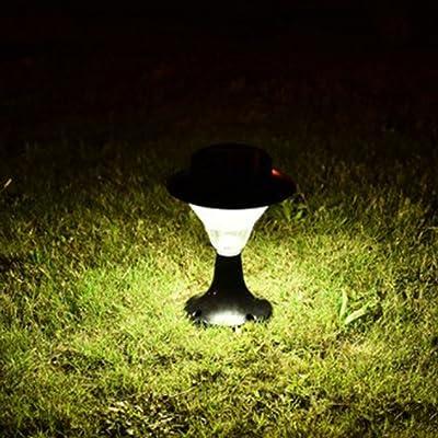 ZHRUXI Lumière Solaire De Plein Air LED Paysage Éclairage De Jardin ...
