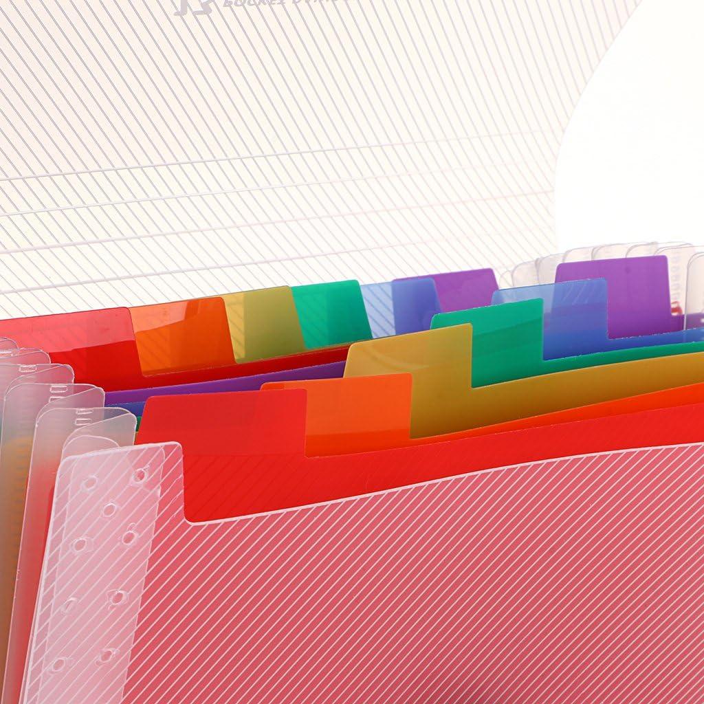 18 cm x 3 cm  x 11 cm, vano porta cartelle formato A6 Ignpion- portadocumenti espandibile chiusura elastica colorato in plastica 13 scomparti