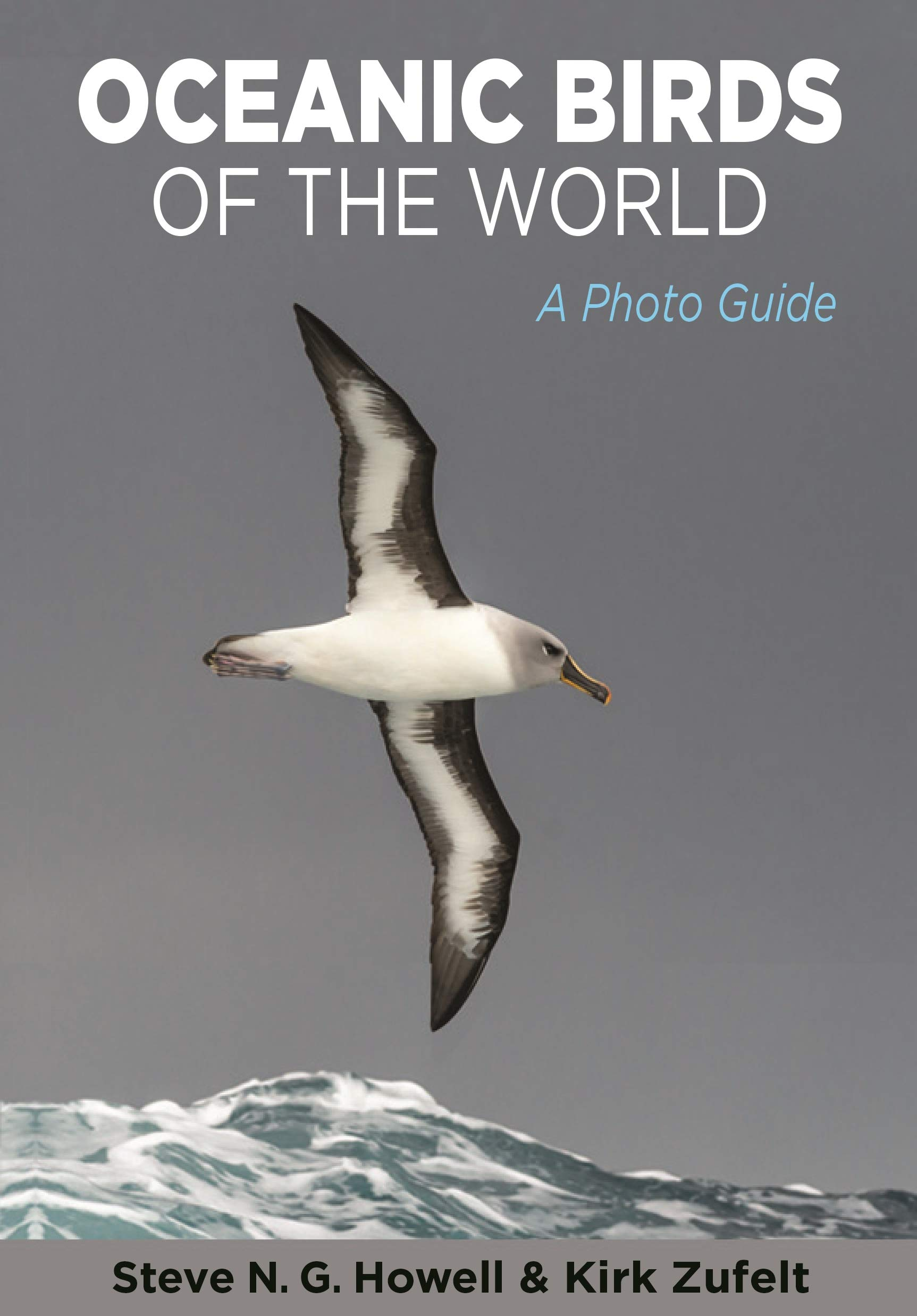 Oceanic Birds Of The World  A Photo Guide